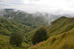 Stratford, North Island, NZ (Explore) (Lynne Karen) Tags: newzealand nature farm over farmland northisland stratford taranaki excellence overtheexcellence newzealandfarmland