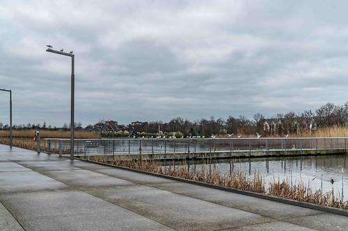 Wind Powered Public Park In Clongriffin Dublin [Father Collins Park]-110929