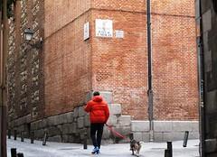 Gente por Madrid (Ruben Juan) Tags: madrid street city espaa canon calle spain gente candid ciudad powershot personas candidcamera g12 candit camaraindiscreta