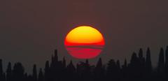 Seguendo L' Eclittica (G.Sartori.510) Tags: sunset sky sun clouds tramonto nuvole cielo sole cypresses cipressi pentaxk5 carlzeissteletessartzk600mmf7