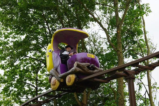 Get Set Go Treetop Adventure