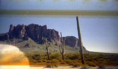Olympus Trip 500, Kodak Max 400 (K e v i n) Tags: arizona cactus sun southwest film nature rock analog cacti 35mm landscape outside desert az scan kodakmax400 sonorandesert saguaros superstitionmountains lostdutchmanstatepark olympustrip500 epsonv500 treasurelooptrail 021715 february172015