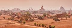 Bagan Plain, Myanmar (syukaery) Tags: trip travel panorama tourism temple pagoda nikon asia burma landmark d750 myanmar burmese bagan 105mm