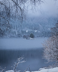An Island on Loch Chon (Images by William Dore) Tags: uk winter mist snow cold ice water fog landscape outdoors scotland nikon moody snowy snowstorm lakes atmosphere trossachs lochs lochchon d810 nikond810