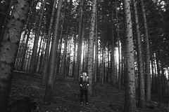 (nic lawrance) Tags: trees light shadow people nature girl contrast woodland dark shine cotswolds gloucestershire figure