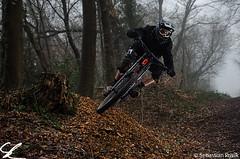 The dead tree (Sebastian Privik) Tags: bike sport fog woods nebel action foggy style downhill wald fahrrad zweirad bikesport nebellig