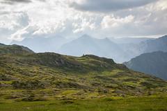 Solitaire (marmaen) Tags: simon montagne amis montblanc clment randonne