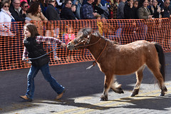 Pony pull (Ashley3D) Tags: 6 girl female walking drive san downtown day texas cattle boots young sunny her parade jeans pony february antonio rains 2016 sanantoniorodeo