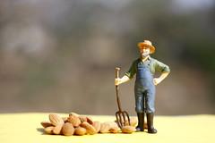 farmer (arju16) Tags: canon miniature farming depthoffield farmer dailylife canoneos40d miniaturefarmer