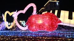 2016 Taiwan Lantern Festival, Taoyuan, Taiwan (My View, My Life) Tags: light sunset red sun flower color animal festival night dark monkey lily shot lotus dragonfly bokeh low year taiwan chinesenewyear frog trail lantern wish lovely taoyuan brilliant     2016