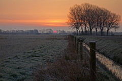 Here she comes (brittajohansson) Tags: morning trees winter sky sun cold netherlands field clouds sunrise landscape dawn outdoor polder bloodred