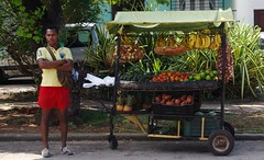 Fruit Stand (Violet Brown) Tags: fruit cuba fruitstand