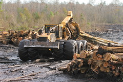 Goodsons: Swamp Loggers skidder. (Static Phil) Tags: tigercat skidder tvdocumentary goodsons swamploggers