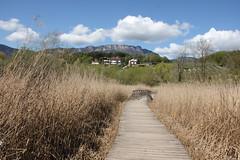 Da Monticolo a Caldaro (Luciana.Luciana) Tags: sentiero monticolo passeggiatadiprimavera