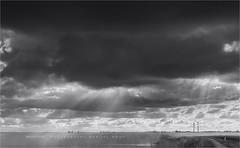 It gets tricky... (Marijke M2011) Tags: winter sky bw lake reed water skyline landscape outdoors island monochromatic emptiness darkclouds ijsselmeer touristic markermeer