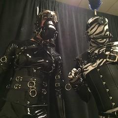 Two Ponies- 6 (AgentDrow) Tags: black sexy tail bondage bdsm pony zebra latex corset pvc zentai ponyplay