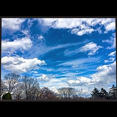 """""""soaring cloudscape over Woodlawn: grief and beauty."""" (3/18/16; New York, New York, USA.) (A Million Shards of Light) Tags: life new york family blue trees winter friends sky usa white love nature loss clouds landscape photography march spring peace mourning awesome memory cumulus vista cloudscape cirrus woodlawn instagram"""