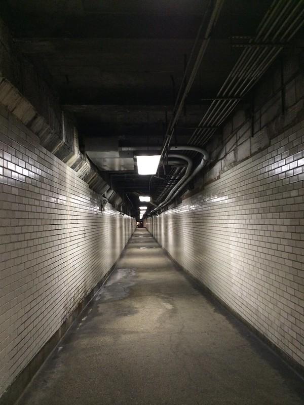 Natural Museum Corridor.
