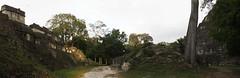 """Tikal: l'Acropole Centrale (à gauche) et la base du Temple du Grand Jaguar (à droite) <a style=""""margin-left:10px; font-size:0.8em;"""" href=""""http://www.flickr.com/photos/127723101@N04/25964548580/"""" target=""""_blank"""">@flickr</a>"""