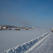 Lobo e ao lado, os barcos encalhados no gelo