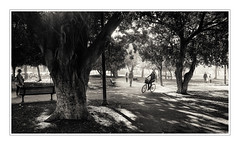 #series: sunny afternoon - Nachmittag (macplatti) Tags: street monochrome bike israel telaviv candid jerusalem rad streetphotography sunny lazy biker hebrew sonnig wunderbar grnflche radfahrerin isr angenehm fujixt10