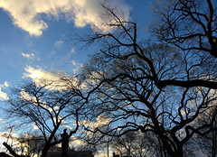 Temperance (Chris Protopapas) Tags: park newyorkcity trees eastvillage statue timburton temperance iphone tompkinssquare