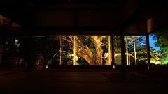 Quiet Moments - Zen (maco-nonchR) Tags: light garden lights spring kyoto spirit framed famous picture illuminated  wabisabi ohara  teien    hosenin     gakubuchi