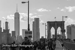 Brooklyn Bridge (Joshua Eller) Tags: newyorkcity brooklynbridge manhatten skyscrapper freedomtower