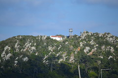 Monte So Brs (PauloConstantino) Tags: portugal nature natural greens verdes nazar nazatown