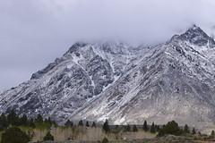 DSC_0653_1259 (Derek Shore) Tags: sky mountain snow tree beautiful wow cool hill d330 nikond3300