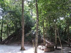 """Tikal: une autre pyramide qui n'a pas encore été déterrée <a style=""""margin-left:10px; font-size:0.8em;"""" href=""""http://www.flickr.com/photos/127723101@N04/26147876912/"""" target=""""_blank"""">@flickr</a>"""
