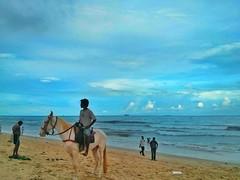 Searching for a Customer... (Alan Vel) Tags: india madras marinabeach chennai tamil tamilnadu horseriding southindia horseride mylaporetimes triplicanediaries