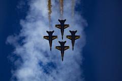 The Blue Angels (designlucasphotos) Tags: blue team display angels