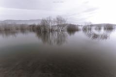 Silent Scream (oskaybatur) Tags: longexposure morning trees lake reflection nature monochrome turkey landscape trkiye april bolu 2016 turkei uzunpozlama sigma1770 glky justpentax pentaxart pentaxkr oskaybatur