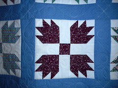 BEAR CLAW QUILT - Made by Louise Cooper for Terry Powell - quilted by DLQ (DLQuilts) Tags: chrisking louisecooper terrypowell legacyquilt bearclawquilt statlerandfreehand modernflowerblock