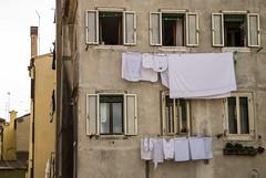 (ianesellicaterina) Tags: casa grigio chioggia finestre panni