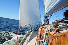 pilgrim.2012.116.1377 (pilgrim.ru) Tags: travel blue summer water wooden sailing wind russia yacht sunny rope balticsea adventure sail regatta yachting