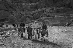 Around Petra (Felix Vila) Tags: petra jordan bedouin jordania wadimusa nebataeans