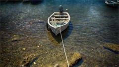 A la espera... (candi...) Tags: puerto cuerda mar agua barca motor piedras airelibre remos ametllademar parcsama
