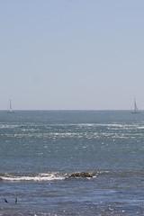 IMG_3719 (armadil) Tags: beach beaches mavericks californiabeaches