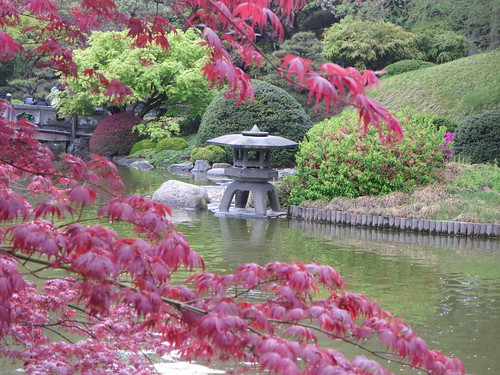 Japanese Hill And Pond Garden During The Sakura Matsuri, Cherry Blossom  Festival In