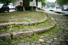 untitled (nicolasheinzelmann) Tags: city analog schweiz switzerland spring flickr details rangefinder stadt april bern grn m6 baum farbig matte boden leicam6 316 messsucher kodakektar100 messsucherkamera voigtlnder40mmf14 nicolasheinzelmann april2016
