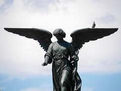 Bethesda Fountain... (THE ARCH1) Tags: nyc newyorkcity sculpture ny newyork fountain centralpark parks newyorkny bethesdafountain bethesdaterrace
