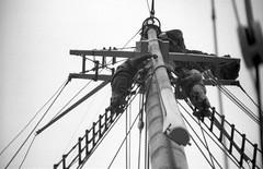 Up Aloft Sch Roseway 8-25-1988mrf2 (ironmike9) Tags: ocean sea water coast boat seaside ship maine vessel atlantic crew sail schooner rigging seacoast deckhand roseway topmast