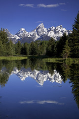 Teton Reflections (Vision & Light Photo) Tags: morning summer mist mountain lake snow mountains reflection tree art nature water beautiful forest landscape photography landscapes photo nationalpark pond woods scenery solitude quiet fineart scenic tranquility peak bluesky calm snowcapped reflect evergreen photograph wyoming grandtetons wilderness teton tetons stillness grandteton tranquil peacefulness grandtetonnationalpark mountainpeak schwabacherslanding schwabacher