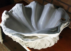 Grey Giant Clam Shell SINK 2 (LittleGems AR) Tags: ocean sea sculpture sun beach home statue giant bathroom shower aquarium soap sand bath sink natural contemporary unique decorative shell craft style toilet towel clam basin special shampoo taps wash ornament gift seashell pearl nautical reef decor spa luxury opulent fossils oneoff clamshell mollusks cloakroom bespoke tridacna sculpt crafted gigas facetowel