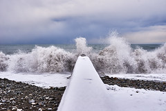 Small storm (Michael Babakov) Tags: street city winter sea snow nikon blacksea sochi d610