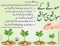 Photo (kufarooq) Tags: muslim islam