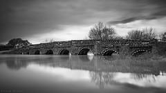 Troubled Water (Sarah_Brooks) Tags: bridge bw white black reflection tree mill water monochrome architecture river mono circles arches le dorset riverstour sturminstermarshall whitemillbridge