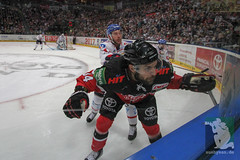 "DEL16 Kölner Haie vs. Adler Mannheim 24.01.2016 093.jpg • <a style=""font-size:0.8em;"" href=""http://www.flickr.com/photos/64442770@N03/24310833003/"" target=""_blank"">View on Flickr</a>"